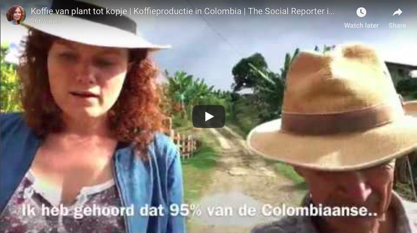 Koffie: het proces van plant tot kopje | Koffieproductie in Colombia